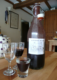 'Our House' Blackberry Gin